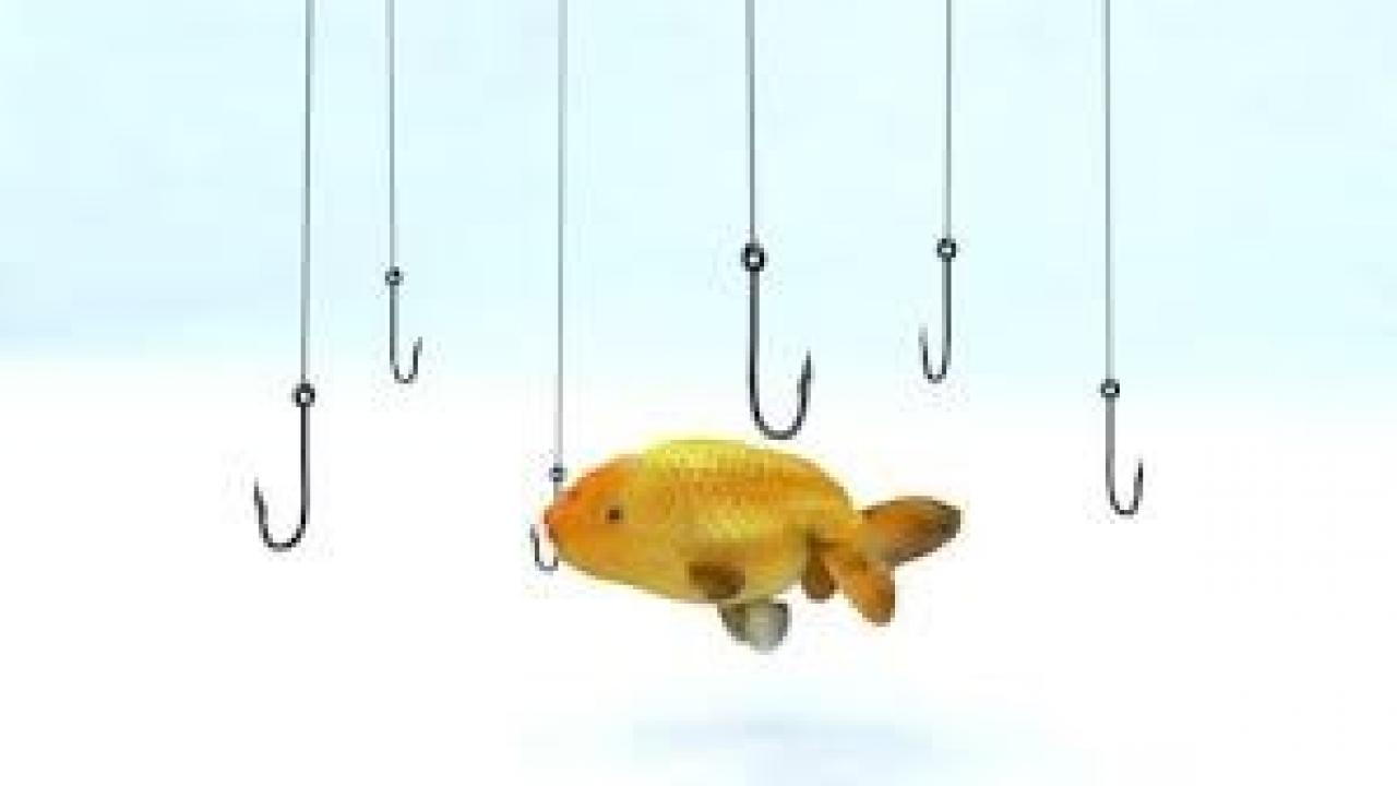fish in water with hooks